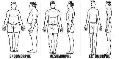 Ectomorphe : comment prendre du poids