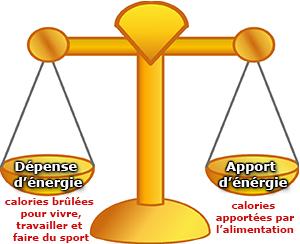 Prise de poids : comprendre votre balance énergétique