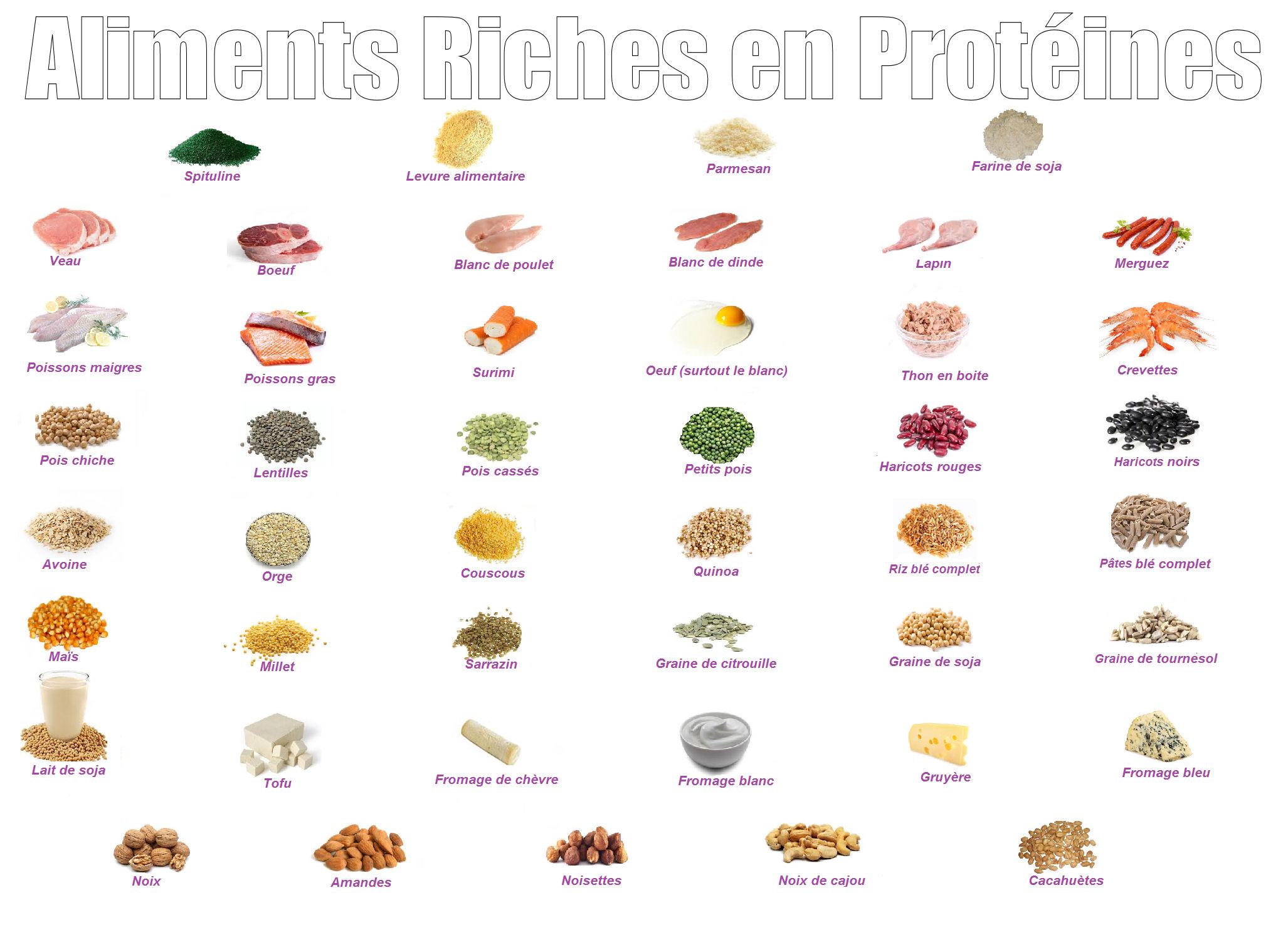 Aliments riches en protéine pour la prise de poids!