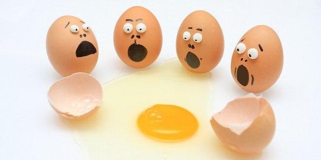 PRISE DE MASSE : les œufs entiers : le mythe du jaune d'oeuf